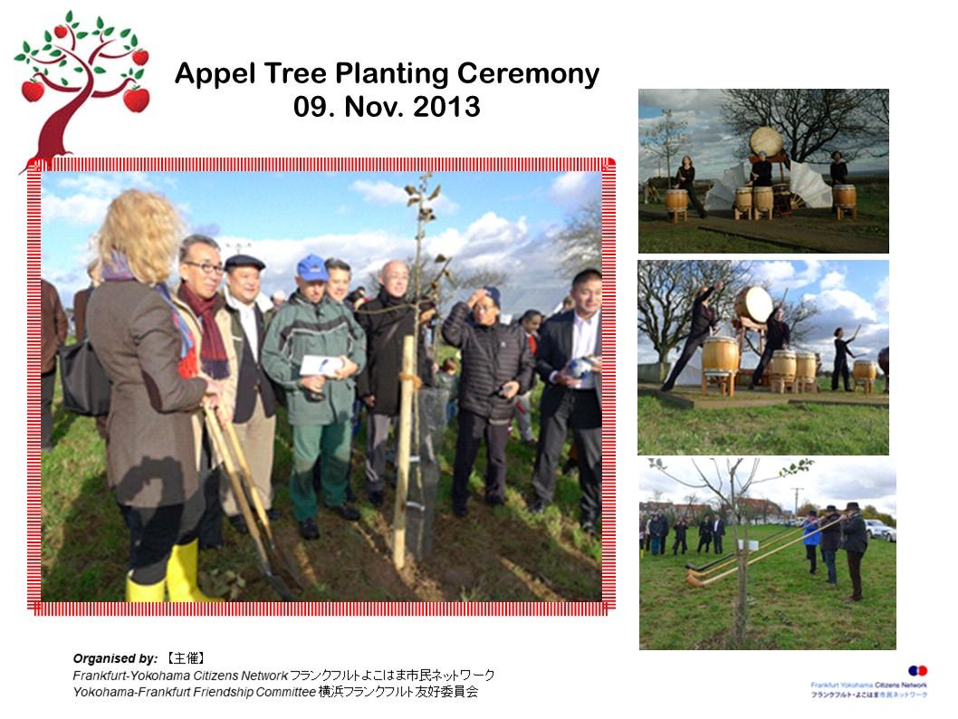 baumpflanzung 2013